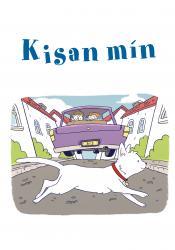 Listin að lesa og skrifa 13b - Kisan mín (rafbók)