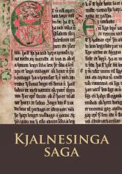 Kjalnesinga saga - hljóðbók