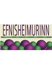 Efnisheimurinn – Kennsluleiðbeiningar og verkefni