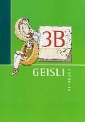 Geisli 3B – Vinnubók