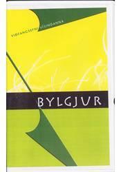 Viðfangsefni vísindanna – Bylgjur