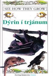 Fylgst með þeim vaxa – Dýrin í trjánum